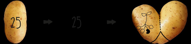 4_Etikettenfunktion
